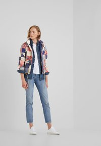 Polo Ralph Lauren - PATCHWORK - Down jacket - multi - 1