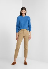 Polo Ralph Lauren - BLEND - Maglione - gentian blue heat - 1