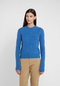 Polo Ralph Lauren - BLEND - Maglione - gentian blue heat - 0