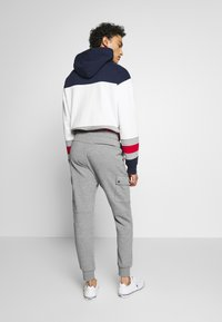 Polo Ralph Lauren - DOUBLE TECH - Pantaloni sportivi - battalion heather - 2
