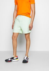 Polo Ralph Lauren - CLASSIC FIT PREPSTER - Shorts - lime - 3
