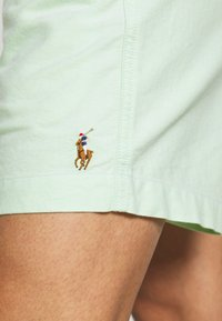 Polo Ralph Lauren - CLASSIC FIT PREPSTER - Shorts - lime - 5