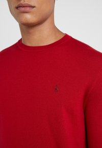 Polo Ralph Lauren - Pullover - park avenue red - 5