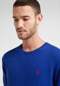 Polo Ralph Lauren - Jumper - heritage royal - 4
