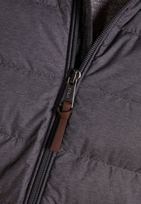 Polo Ralph Lauren - BLEEKER - Bunda zprachového peří - windsor heather - 4
