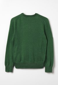 Polo Ralph Lauren - Trui - green heather - 1