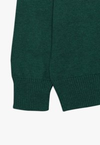 Polo Ralph Lauren - Trui - green/light green - 2