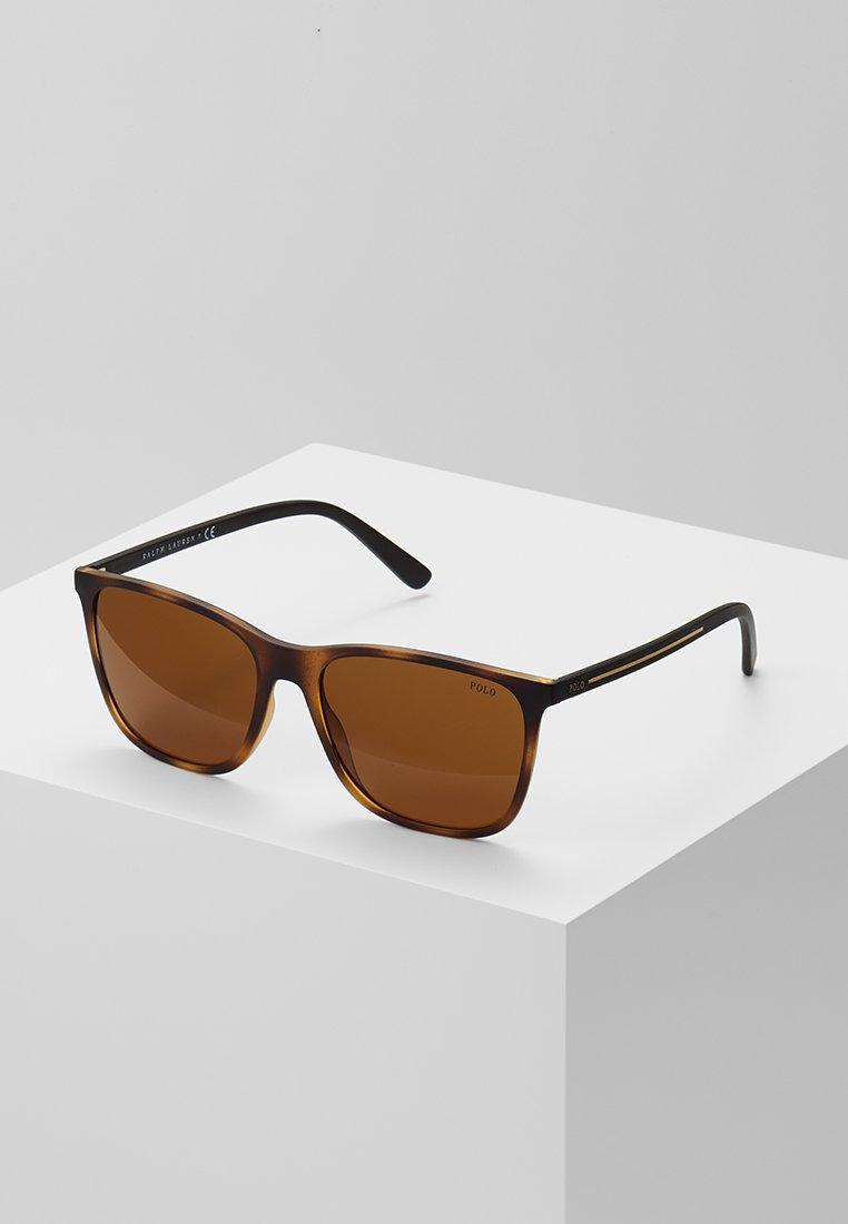 Polo Ralph Lauren - Gafas de sol - matte dark havana/brown