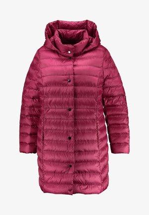 PADRE - Down coat - bordeaux