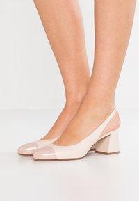 Pretty Ballerinas - SHADE - Klasické lodičky - rose/delice - 0