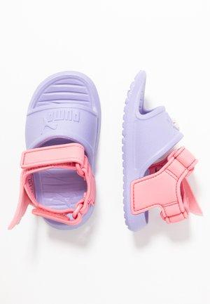 DIVECAT V2 INJEX HERO  - Sandały kąpielowe - sweet lavender/bubblegum/peony
