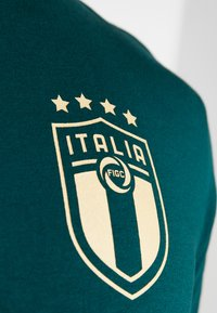 Puma - ITALIEN FIGC FTBLCULTURE TEE - Voetbalshirt - Land - ponderosa pine - 6