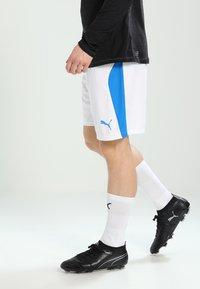 Puma - kurze Sporthose - white/electric blue - 0