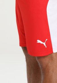 Puma - LIGA  - Short de sport - red/white - 3