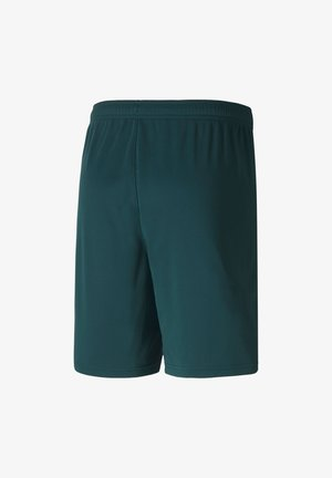 ITALIEN  - Sports shorts - ponderosa pine/peacoat