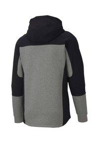 """Puma - PUMA HERREN SWEATSHIRTJACKE """"EVOSTRIPE"""" - Zip-up hoodie - grau (231) - 4"""