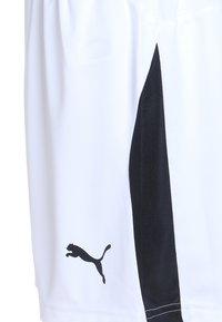Puma - LIGA - Sportovní kraťasy - white/black - 2