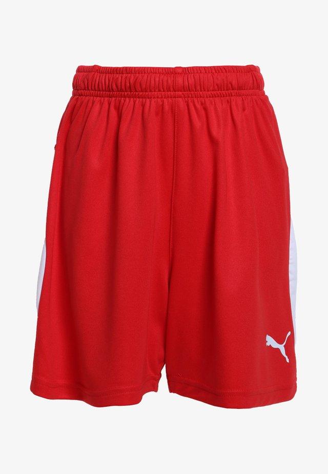 LIGA - Korte sportsbukser - puma red/puma white