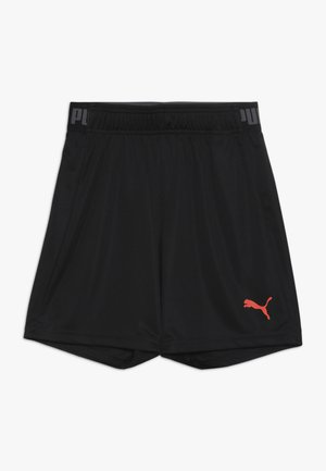 SHORTS - Krótkie spodenki sportowe - puma black