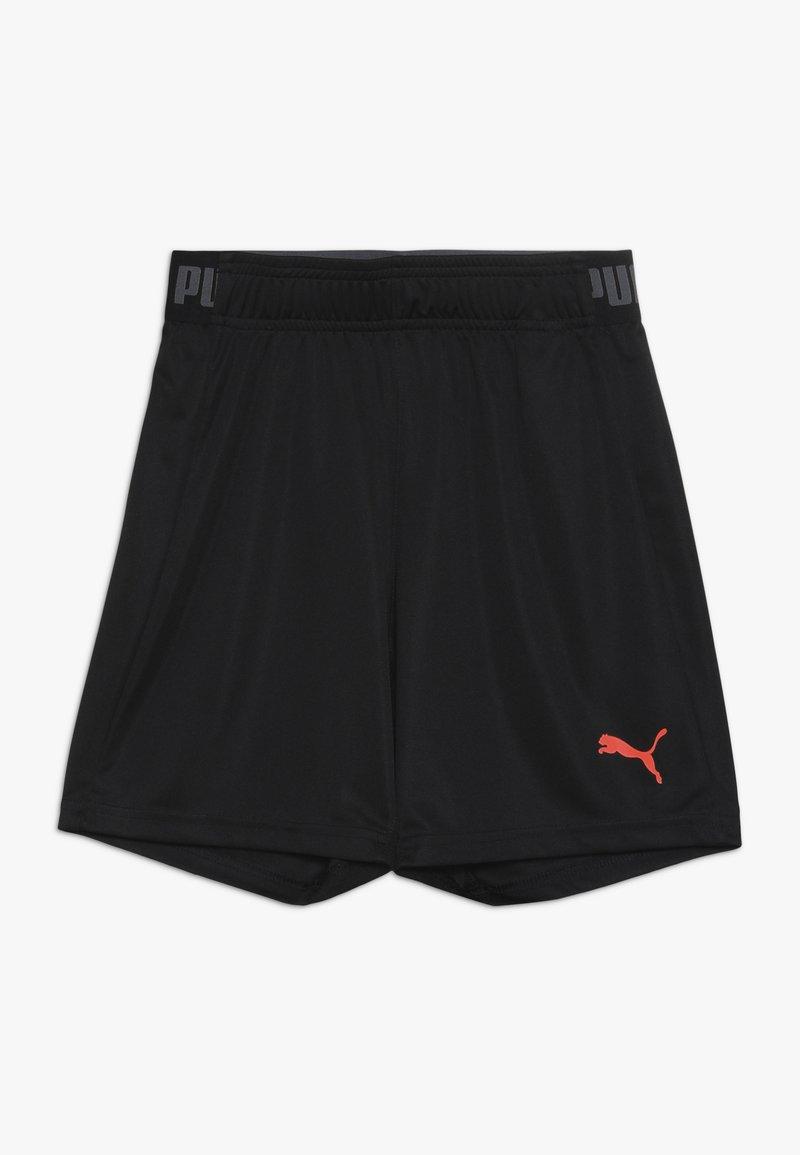 Puma - SHORTS - Sports shorts - puma black
