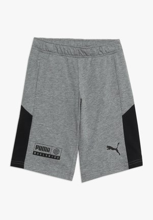 ALPHA BERMUDA - Sports shorts - medium gray heather
