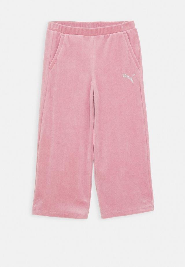 ALPHA PANTS - Pantaloni sportivi - foxglove
