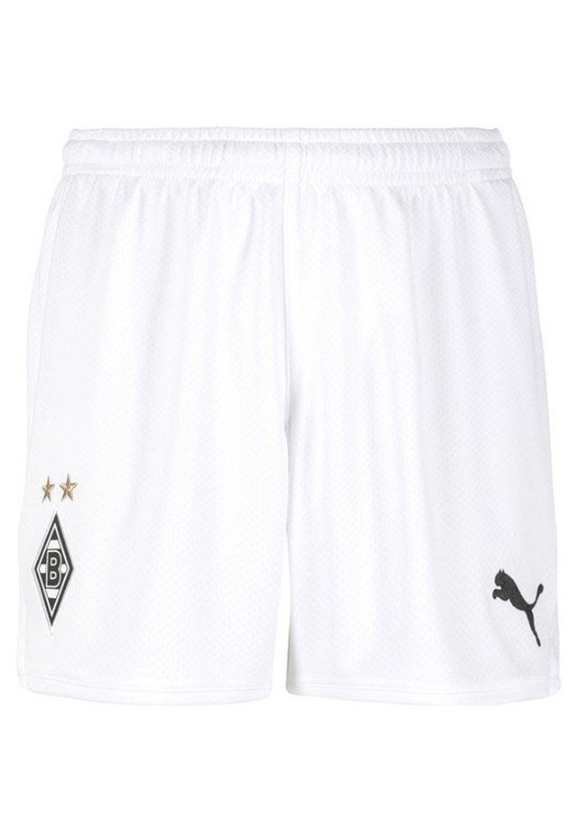 BORUSSIA  - Sports shorts - puma white