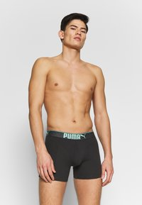 Puma - LIFESTYLE SUEDED BOXER 3 PACK  - Shorty - mint combo - 1