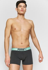 Puma - LIFESTYLE SUEDED BOXER 3 PACK  - Shorty - mint combo - 2