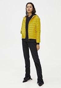 PULL&BEAR - Zimní bunda - yellow - 1