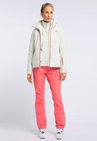 PYUA - BLISTER - Snowboardjacke - foggy white - 1