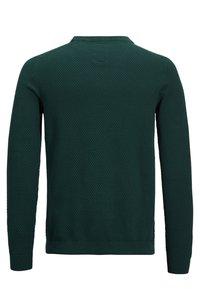 Produkt - PKTHNN  - Sweter - evergreen - 1