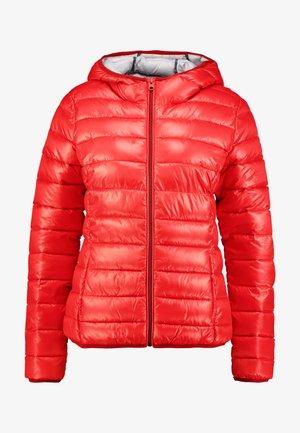 LANGARM - Lett jakke - red
