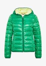 Winter jacket - jolly green