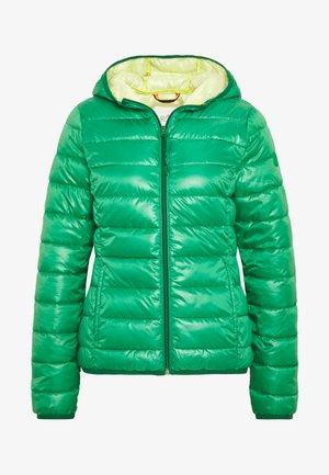 Winterjas - jolly green
