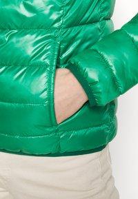 Q/S designed by - Kurtka zimowa - jolly green - 6