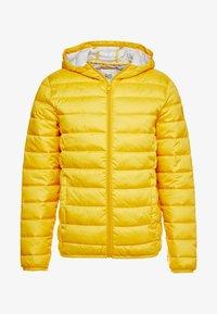 Q/S designed by - OUTERWEAR - Vinterjakke - yellow - 3