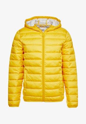 OUTERWEAR - Winterjacke - yellow