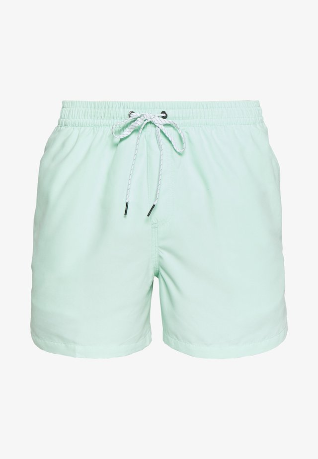 EVERYDAY VOLLEY - Surfshorts - beach glass
