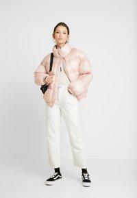 BDG Urban Outfitters - ZIP FUNNEL - Topper langermet - winter stone - 1