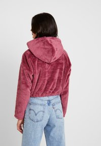 BDG Urban Outfitters - FLUFFY CROP - Sweatshirt - pink - 2
