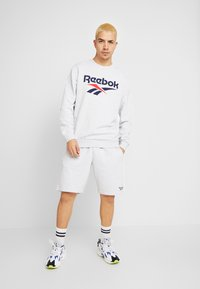 Reebok Classic - VECTOR  - Tracksuit bottoms - mottled light grey - 1