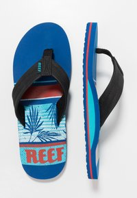 Reef - WATERS - Infradito - blue - 1