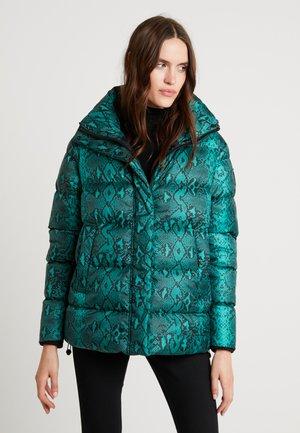 JACKET - Winter jacket - black/green