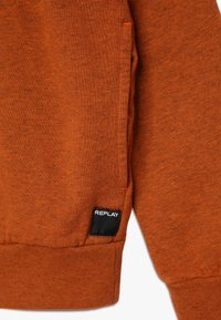 Replay - Hoodie - brown - 3