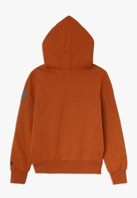Replay - Hoodie - brown - 1