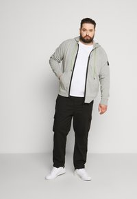 Replay Plus - Zip-up hoodie - light grey melange - 1