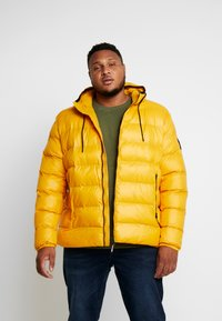 Replay Plus - Veste d'hiver - yellow - 0