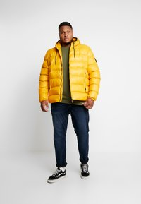 Replay Plus - Veste d'hiver - yellow - 1