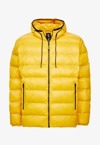 Replay Plus - Veste d'hiver - yellow - 5